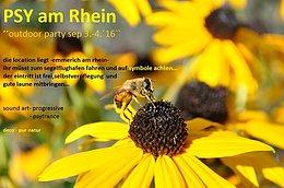 Party Flyer Psy Am Rhein 3 Sep '16, 20:00