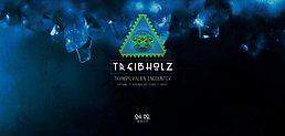 Party Flyer Treibholz IV - Transyvalien Encounter 24 Feb '17, 21:00