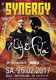 Party Flyer SYNERGY at Globull feat. Aly & Fila 25 Feb '17, 22:00