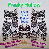Party Flyer Freaky Hollow 20 May '17, 22:00