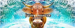 Party Flyer Future Universe w/ Liquid Soul and more 24 May '17, 21:00