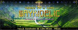Party Flyer Waykidelic Trance Techno Event 30 Jun '17, 20:00