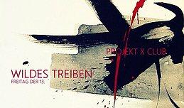 Party Flyer Wildes Treiben - Freitag der 13. 13 Oct '17, 23:00
