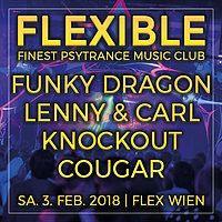 Party Flyer Flexible 3 Feb '18, 23:00