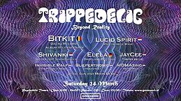 Party Flyer Trippedelic - Beyond Reality 24 Mar '18, 23:00