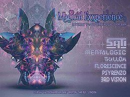 Party Flyer Magical Exxperience 17 Nov '18, 23:00