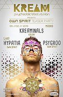 Party Flyer Own Spirit Festival Teaser Party 9 Feb '19, 23:30