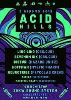 Party Flyer Acid Hills feat. Ling Ling/Sevenum six/Bisturi Open Air 8 Jun '19, 22:00