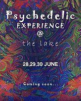 Party Flyer Psychedelic Experience @TheLake Open Air Festival (Seccond Edition) 28 Jun '19, 20:00