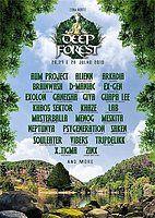 Party Flyer Deep Forest Festival 26 Jul '19, 15:00