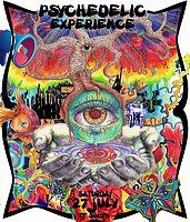 Party Flyer SUMMER PSYCHEDELIC EXPERIENCE-TF SOUTH 27 Jul '19, 22:00