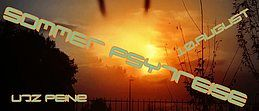 Party Flyer Sommer PsytreisE OA 10 Aug '19, 17:00