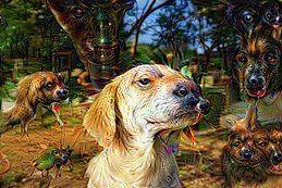 Party Flyer Canigoldra Dogpawty - Hitech meets Techno 25 Oct '19, 23:00