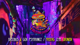 Party Flyer Goa Bassbus in Odonien 22 Nov '19, 22:00