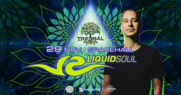 Party Flyer TREEBAL: LIQUID SOUL at SPACEHALL 29 Nov '19, 23:00