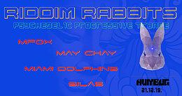 Party Flyer RIDDIM RABBITS 21 Dec '19, 22:00