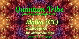 Party Flyer Quantum Tribe (journey into psytrance) 10 Jan '20, 23:00