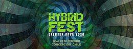 Party Flyer Hybrid Fest ✬ Open Air Rave 2020 22 Feb '20, 12:00