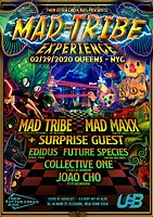 Party Flyer Amalgamation - The Mad Tribe Experience 29 Feb '20, 20:00