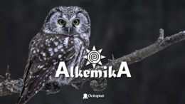 Party Flyer AlkemikA ۞ Magic Gathering 3 Jul '20, 15:30