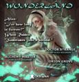 Party Flyer Wonderland ۞ return to the rabbit hole 22 Feb '20, 19:30