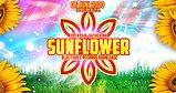 Party flyer: SUNFLOWER Open Air Gathering 6 Jun '20, 14:00