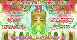 Party Flyer Psychedelic Living Room #11 29 Aug '20, 19:00